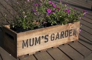Mums garden crate main