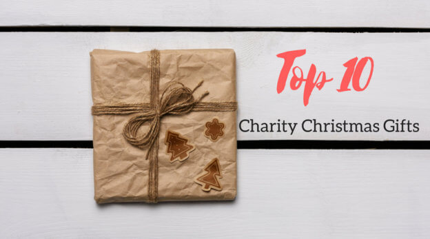 Top 10 Charity Christmas gifts