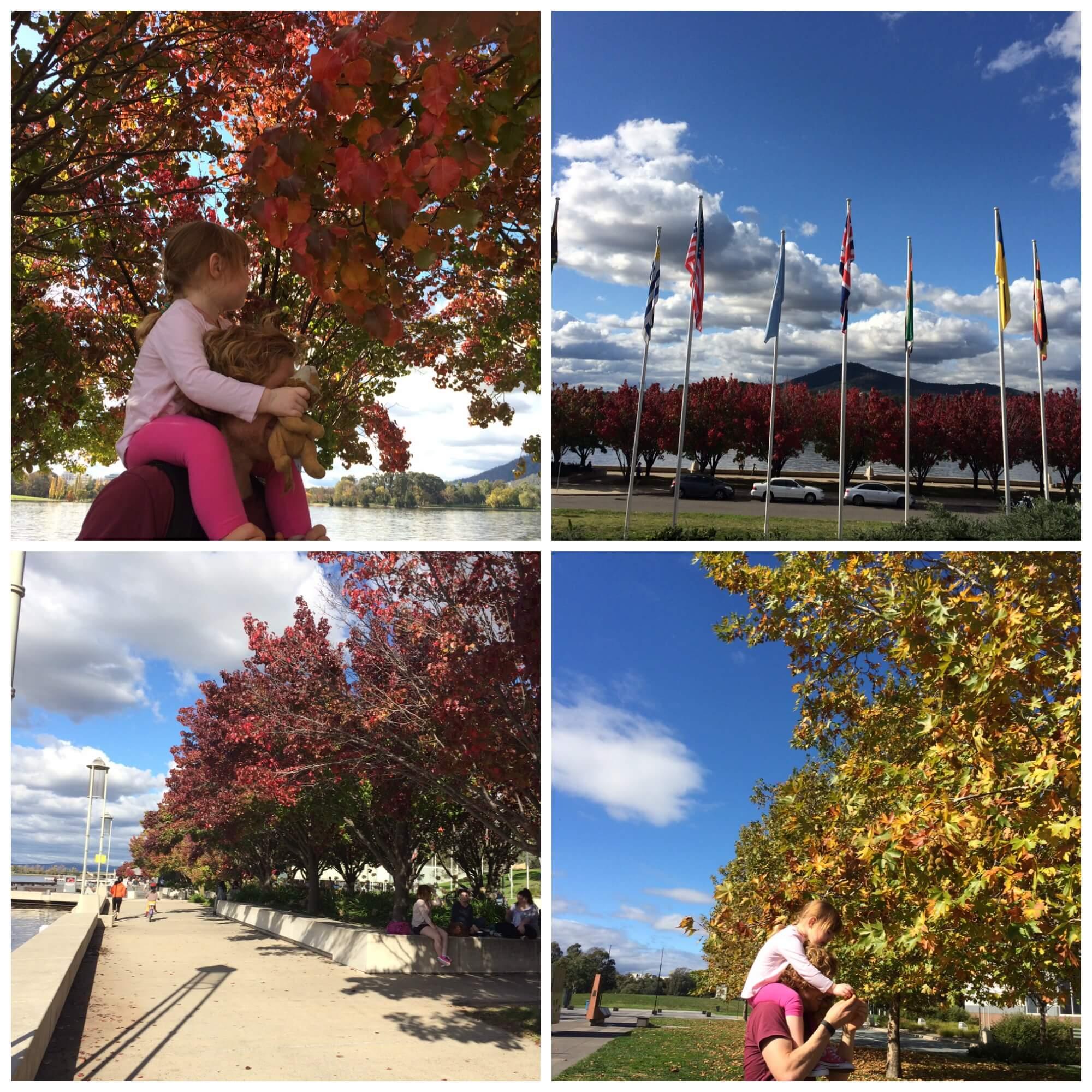 Novotel Canberra Autumn