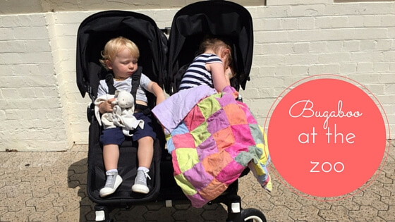 Bugaboo donkey review / double pram