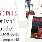 Your Christmas Survival Guide- a free ebook!