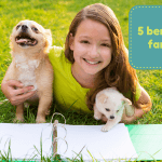 5 benefits of a family dog