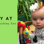 Out & About: A Day out at WILD LIFE Sydney Zoo